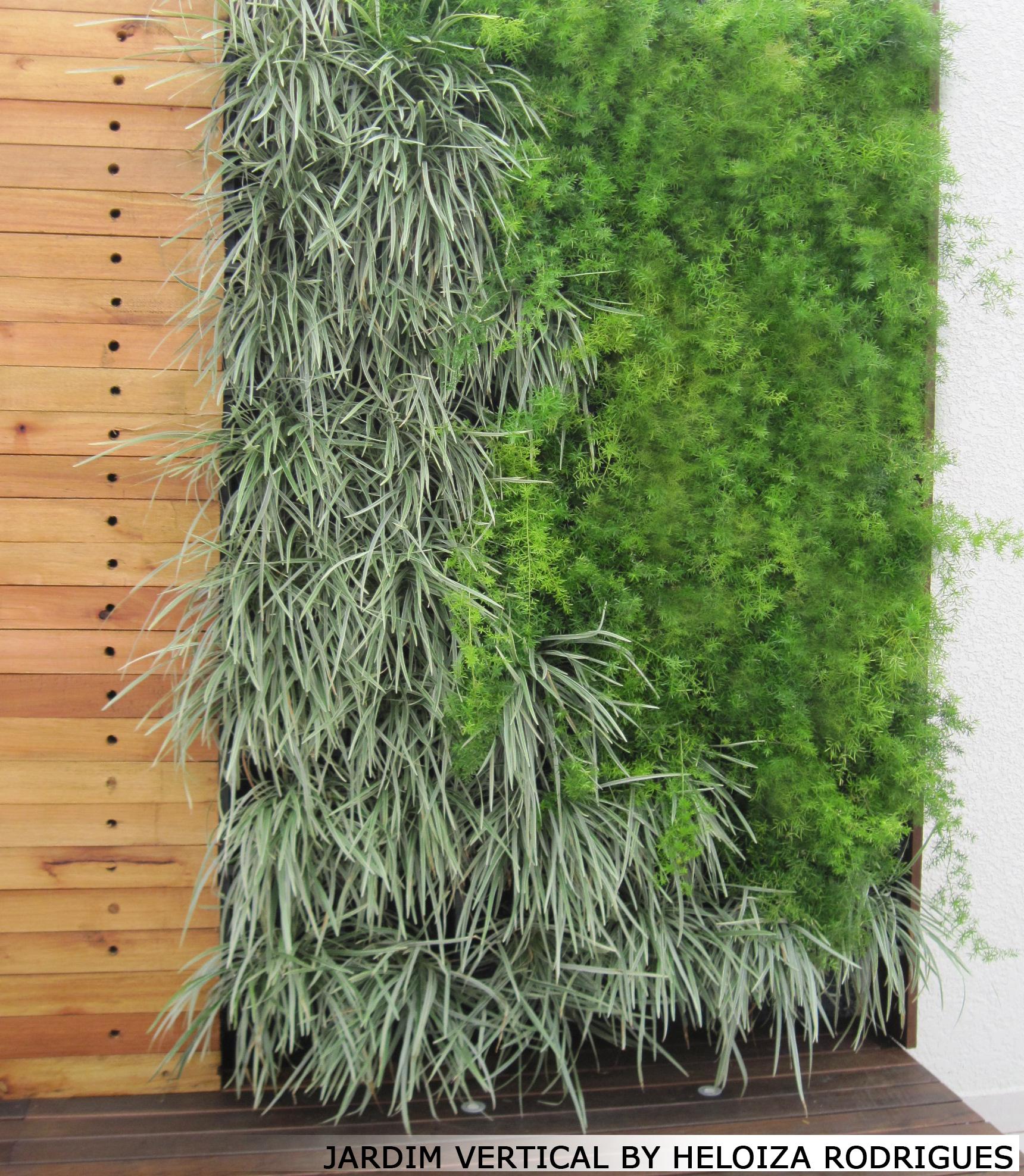jardim vertical by heloiza rodrigues